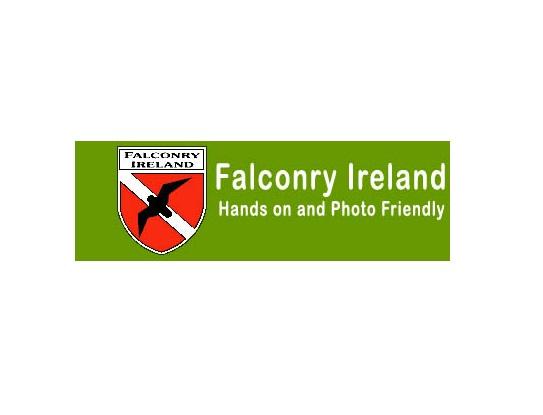 Falconry-Ire
